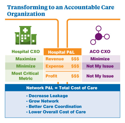 An illustration of transforming to an accountable care organization