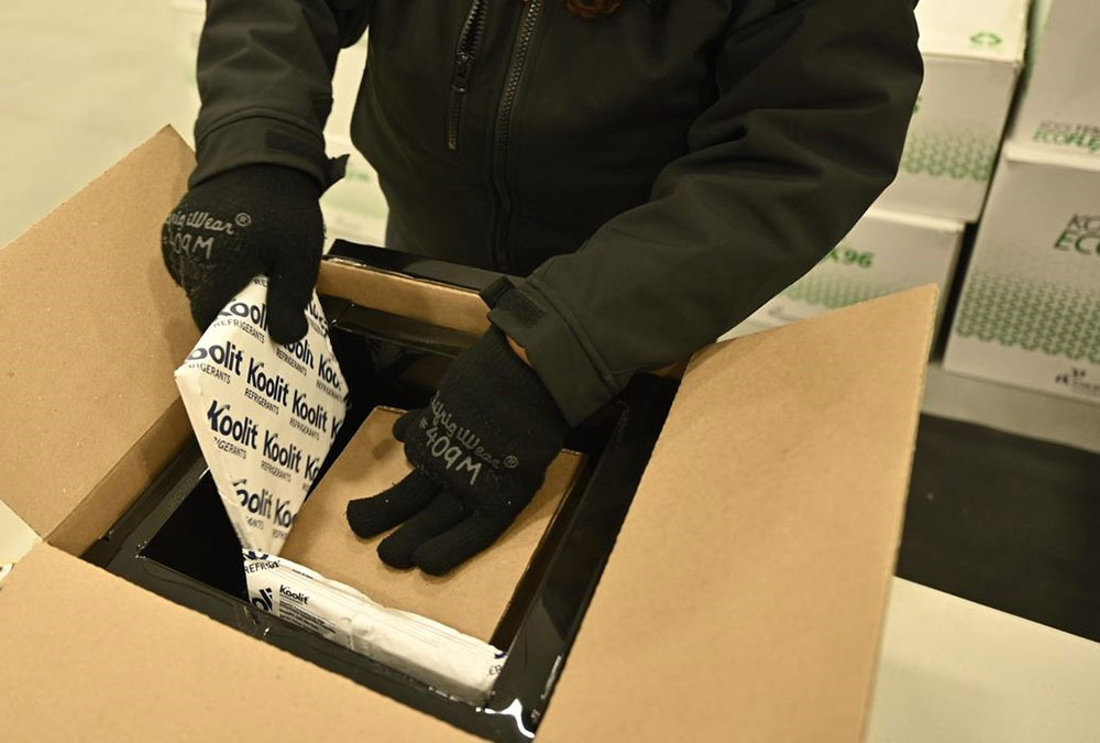 Employee packing the vaccines with ice packs for transport