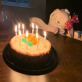 Stuffed rabbit celebrates her birthday with a cake